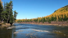 River Multa near lake Lower Multinskoe in Altai Stock Footage