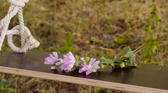 Flowers on a swing. Stock Footage
