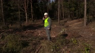 Lumberjack in forest clearing Stock Footage