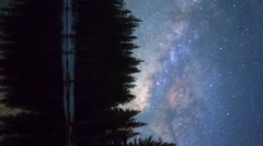 MoCo Tracking Astro Timelapse of Milky Way & Alpine Forest in Yosemite -Vertical Stock Footage