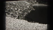 1946: dog walks on beach and observes the water HARRISBURG Stock Footage