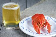 Cooked freshwater crayfish with beer Stock Photos