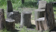 Table and chairs made of pine logs Stock Footage