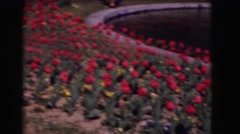 1946: flowers everywhere. garden full of flowers Stock Footage