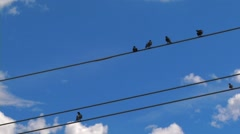 Time Lapse of Birds on telephone wire with beautiful puffy clouds Stock Footage