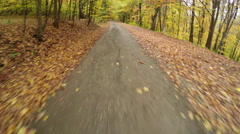 Driving in the forest at autumn with falling leaves Stock Footage