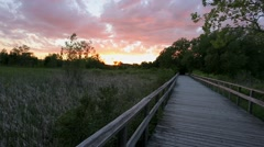 Sunset view walking on a boardwalk in nature park Stock Footage