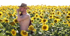 Shirtless Young Farmer Man Walking on Yellow Sunflower Field in Hot Summer Day Stock Footage