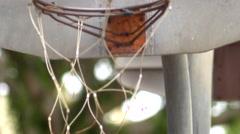 Backboard of an old outdoor basketball hoop. Stock Footage