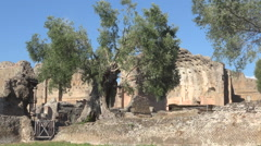 Hadrian's Villa, Tivoli, Italy, view of thermal baths with heliocaminus Stock Footage
