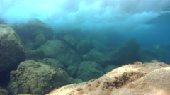 Lonely fish and waves over the rocks behind wavebreaker (4k) Stock Footage