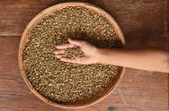 Coffee beans on hand Stock Photos