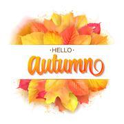 Autumn typographic. Fall leaf. Vector illustration EPS 10 Piirros