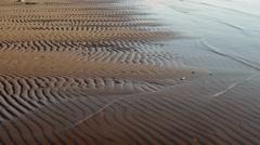 Wavy sand pattern Stock Footage