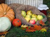 The autumn harvest from the garden on a glade with autumn leaves. Shopping, p Stock Photos