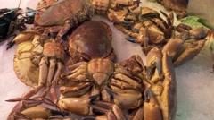 Crabs in the market La Boqueria in Barcelona Stock Footage