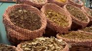 Mushrooms in the market La Boqueria in Barcelona Stock Footage