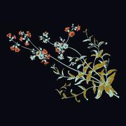 Colorful botanical hand drawn branches with flowers isolated, herbal flowers Stock Illustration