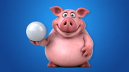 Fun pig - 3D Animation, blue background Stock Footage