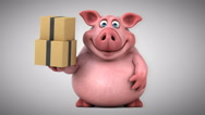Fun pig - 3D Animation, boxes Stock Footage