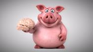 Fun pig - 3D Animation, brain Stock Footage
