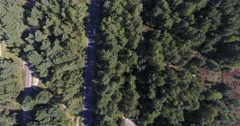 Aerial video of road and rail in forrest Stock Footage