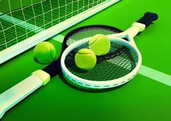 Tennis; racket; tennis grass court Stock Illustration