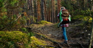 Child girl 8-9 years hiking away in forest Stock Footage