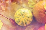 Close up of pumpkins on wooden table at home Stock Photos