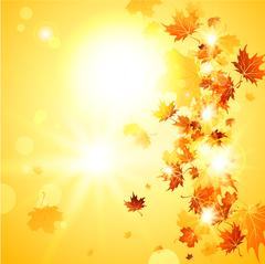 Beautiful fall background  with falling leaves Piirros
