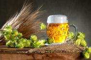 Beer glas and raw material for beer production Stock Photos