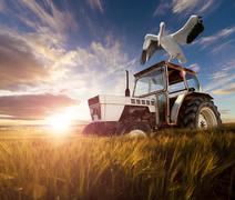 Rural world and  travel concept Stock Photos