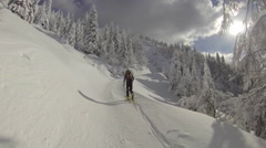 A man goes cross-country skiing in fresh power snow. Arkistovideo