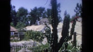 1962: tall cactus and house and it's accompanying yard behind it SAN PEDRO Stock Footage