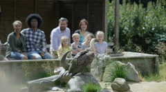 4K Families visiting a conservation centre watch as a vulture takes flight Stock Footage