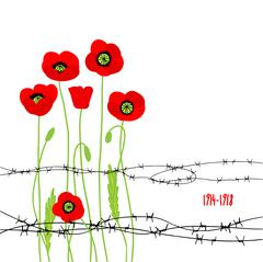 Card with poppies and barbed wire Stock Illustration
