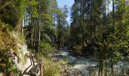Bavaria Berchtesgaden National Park Ramsau Nature learning trail river Ache Stock Photos