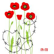 Poppies and barbed wire Stock Illustration