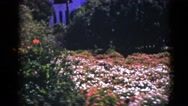 1953: flower scene BOSTON Stock Footage