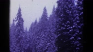 1953: roadside inspiration snow covered pine trees old classic car BOSTON Stock Footage