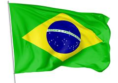 Flag of Brazil with flagpole Stock Illustration
