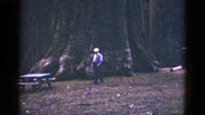 1953: forest area is seen CALIFORNIA Stock Footage