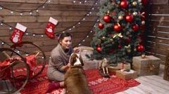 A girl regaling bulldog under fir-tree Stock Footage