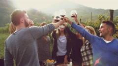 Group of friends toasting with red wine in the vineyard Stock Footage