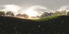 4K Wonderland Meadow with Fireflies VR360 Stock Footage