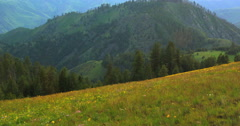 Late evening storm dissipating over a carpet of wildflowers in Hells Canyon Stock Footage