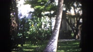 1960: garden is seen FLORIDA Stock Footage