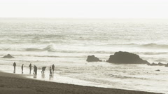 Oregon Coast High Tide Group Stock Footage