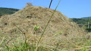 Haystack and mountains Stock Footage
