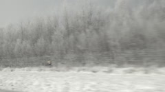 Driving a car on a highway. Passing trees with freshly fallen snow. Stock Footage